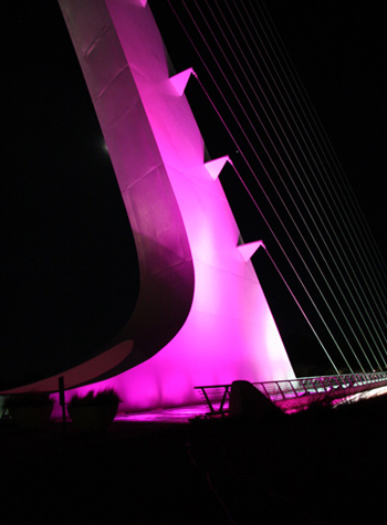 The Pink Sundial Bridge